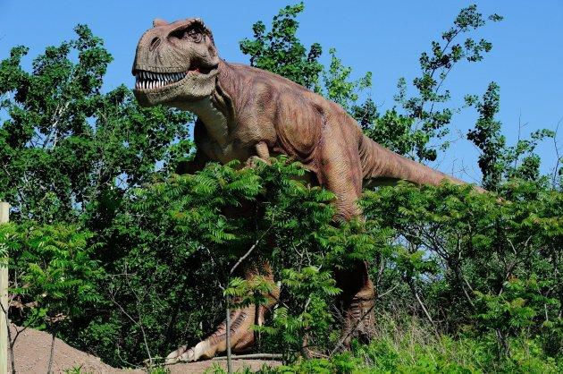 dinosaur-2jpg-9301e4bbc4891d42
